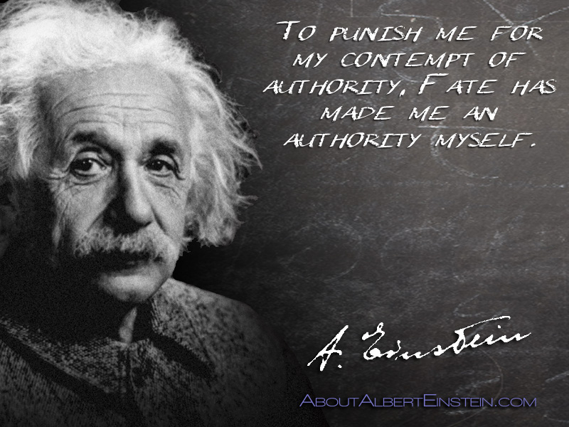 how to become an authority in your niche